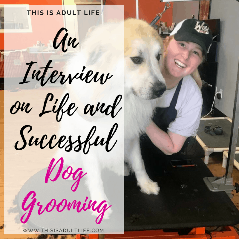 Interview on Life and Successful Dog Grooming