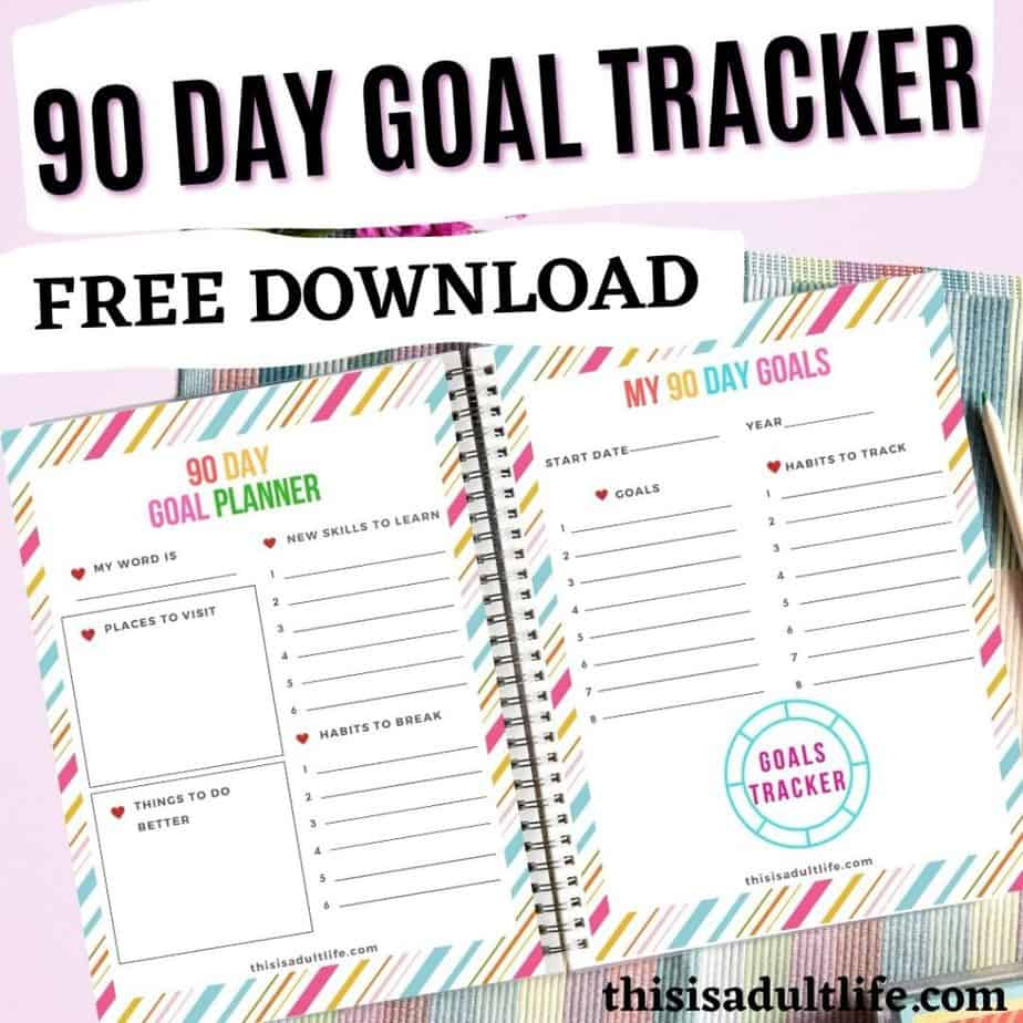 Binder containing 90 Day Goal Tracker and Planner